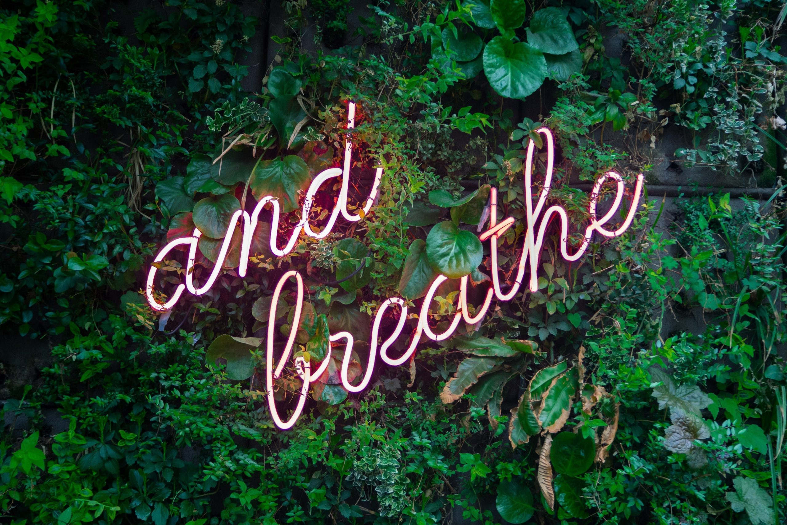 And Breathe to represent resilience